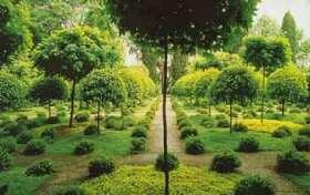 Nuova pagina 1 - Il giardino degli aranci ...